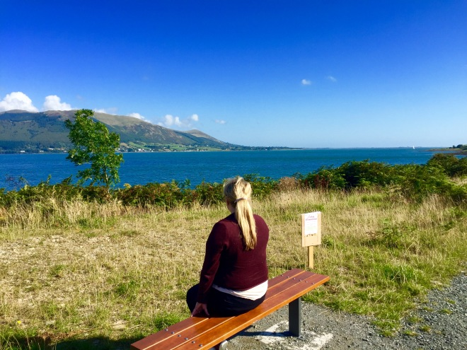 Enjoying the views of Carlingford Lough along the Greenway