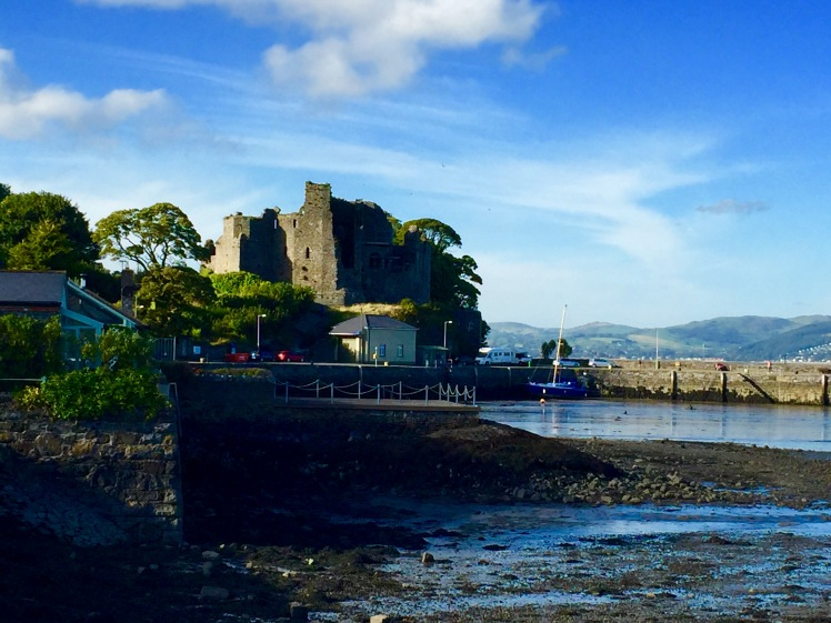 A view of King John's Castle at Carlingford Harbour