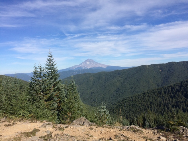 View of Mount Hood from McIntyre Ridge Trail