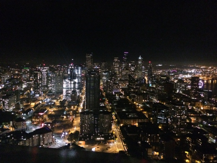 The view at night from the Space Needle
