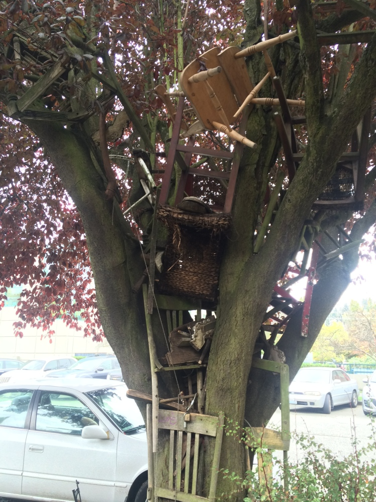 Chairs don't grow on trees.... or do they?
