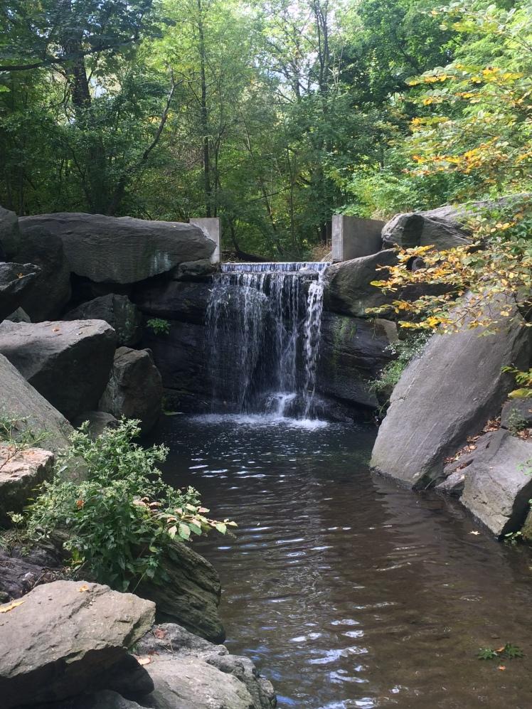 Waterfall at the Ravine