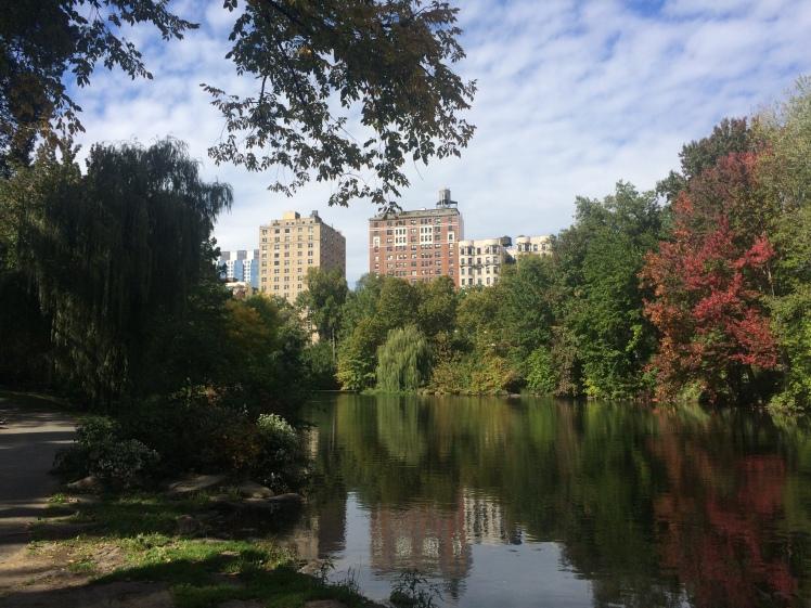 Central Park New York fall