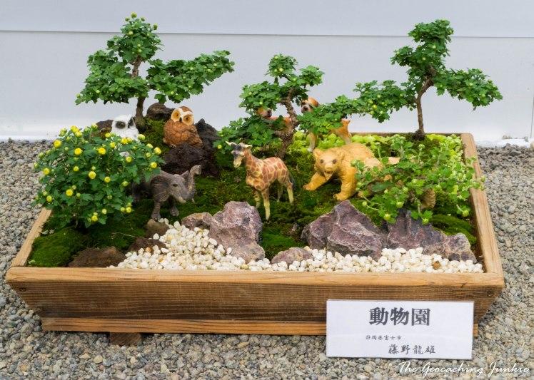 meiji-shrine-6