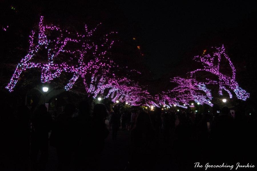 ueno-park-tokyo-5