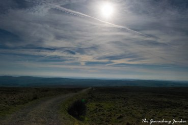 Divis and the Black Mountain-29
