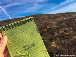 Divis and the Black Mountain-40