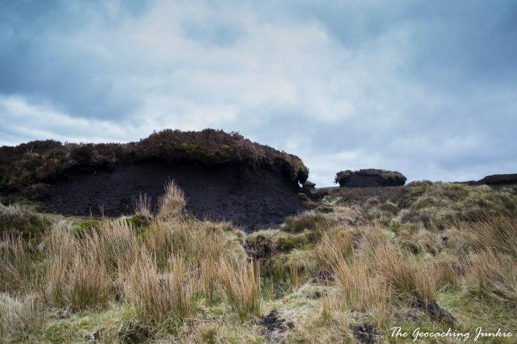 Turlough Hill blanket bog-2