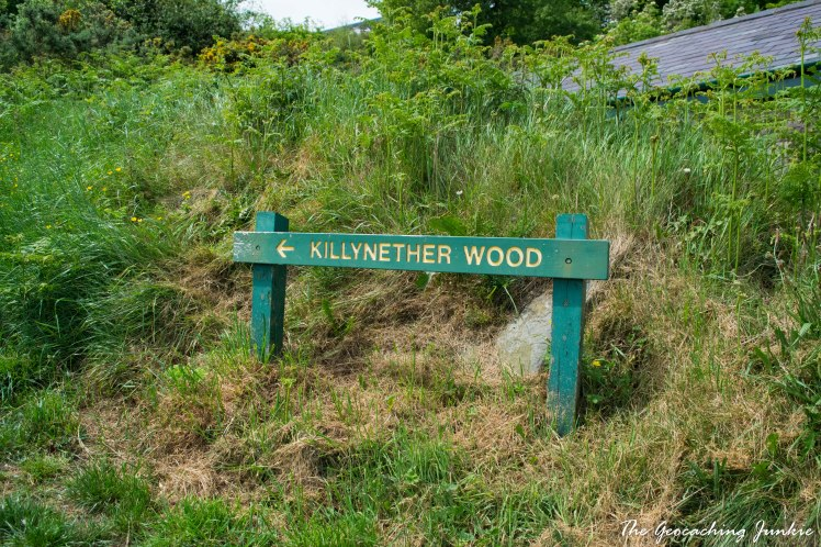 May Hike: Scrabo Country Park | The Geocaching Junkie