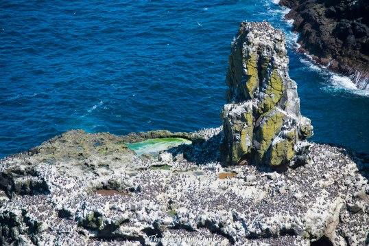 Rathlin Island | The Geocaching Junkie