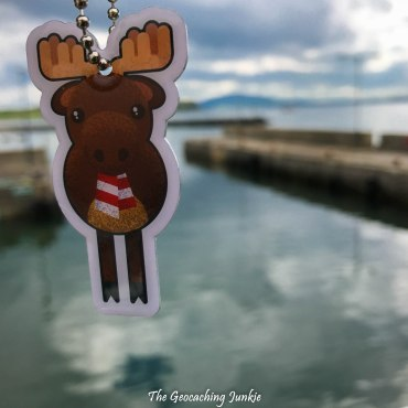 Rathlin Island Moose Willis Mountain Warehouse-3